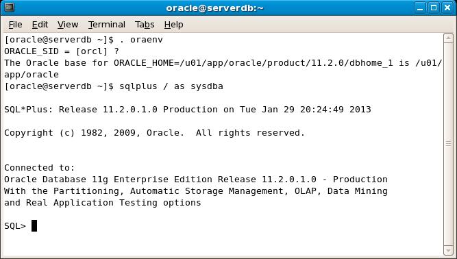 Entrar en SQLPlus como DBA desde la shell de Linux