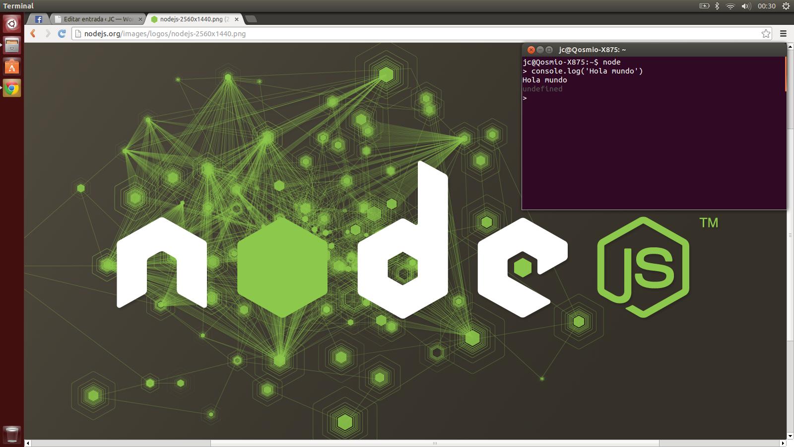 Node.js Ubuntu 13.04